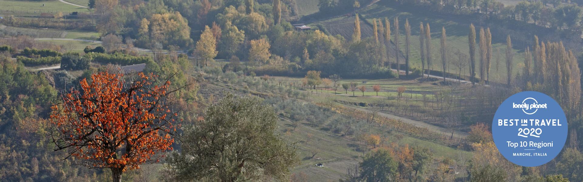 Monte Cavallo (MC)